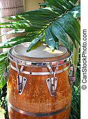 Caribbean style conga drum among the palm trees