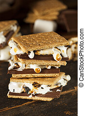 Homemade S'more with chocolate and marshmallow on a graham...
