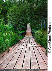 Wooden bridge in forest over the swamp