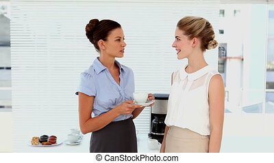 Businesswomen chatting and meeting - Businesswomen chatting...