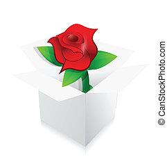 red rose present inside a box illustration design