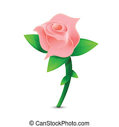 pink rose illustration design