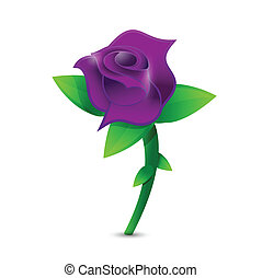 purple rose illustration design over a white background
