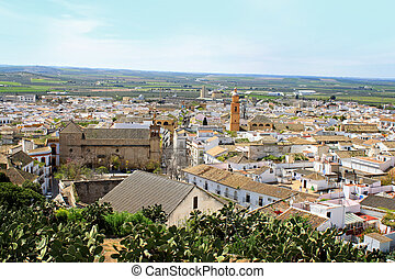 Osuna rooftops, Andalusia, Spain