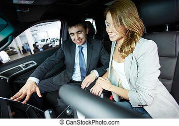bil, sittande