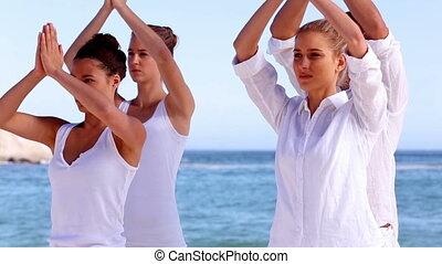 Yoga meditation class on a sunny beach