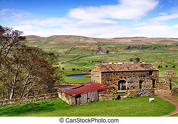 Barn and trees in the Yorkshire Dales - A stone built barn...
