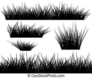 Silhouette of grass on white background