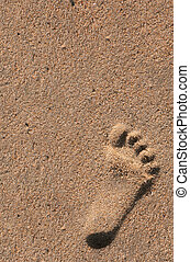 Single Footprint of a Child in the Sand at the Beach