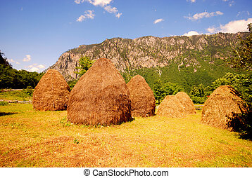 Summer rural landscape with mountain and haystacks