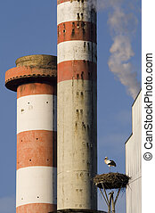 Stacks and stork  - Stork near power plant with smoke