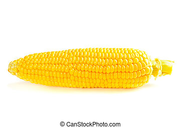 Corn cob - Fresh raw corn cob  isolated on the white