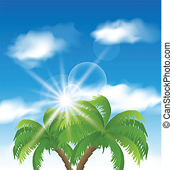 Summer holiday background with sunlight and palmtree -...