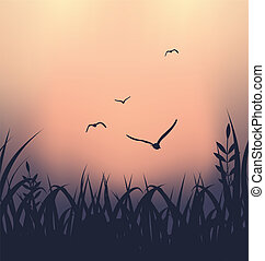 Landscape with grass and flying seagulls - Illustration...