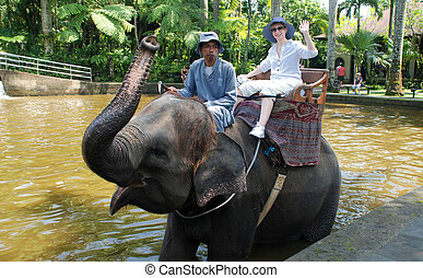 Elephant ride(Bali, Indonesia) - Bali, Indonesia - January...