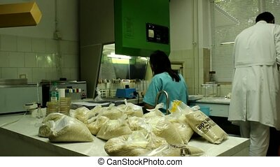 laboratory - veterinary food testing in laboratory