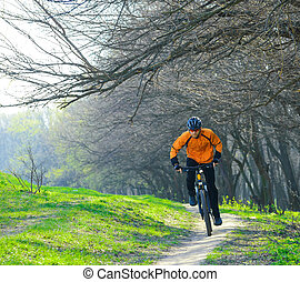 Cyclist Riding the Bike on the Trail in the Forest - Cyclist...