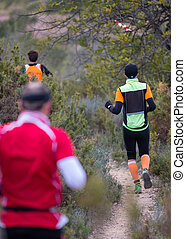 hard marathon mountain race, descent - Several runners...