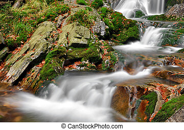 Waterfall in the national park Sumava-Czech Republic