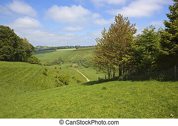 scenic countryside - a picturesque view across agricultural...