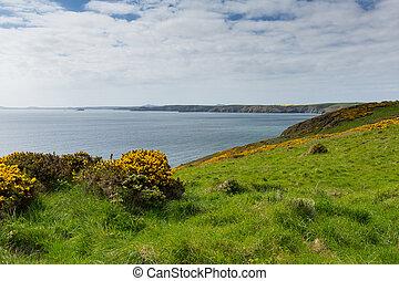 Pembrokeshire coast Newgale