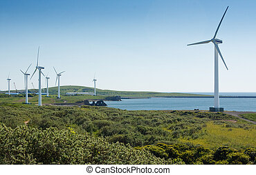 Coastal wind farm used to harness renewable wind power into...