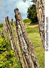 Rustic Fence Post - 2011 Rustic Fence Post