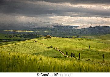 Tuscany landscape with farm near Pienza, Italy