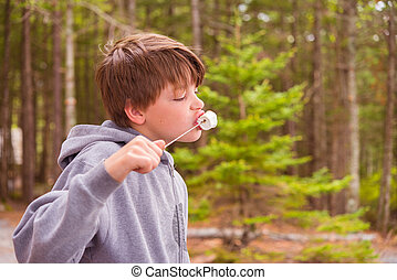Young Boy Eating Marshmallow - Young Boy Eating Roasted...