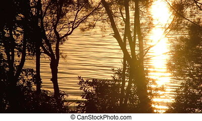Nature Background 1 - Sparkling reflections of sunlight on...