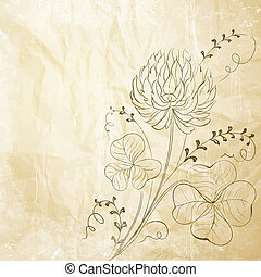 Clover flowers isolated on white background.  illustration.
