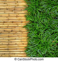 Green grass on bamboo background.