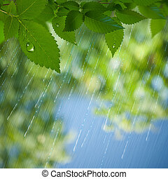 Summer Rain. Abstract environmental backgrounds for your design
