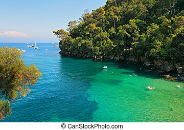 Small bay and cliff covered with trees in Portofino, Italy.