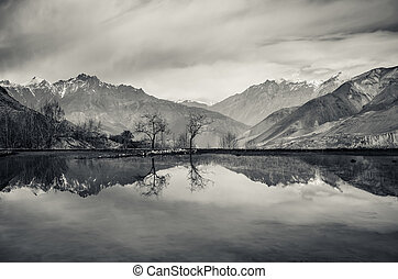 Trees and mountains reflection in still lake, monochrome...