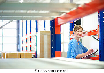 Businesswoman controlling inventory in a warehouse -...