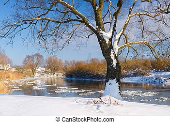 snow-covered winter river. Nature composition