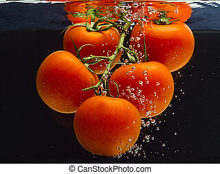 Fresh tomatoes in a liquid - A branch of fresh tomato falls...