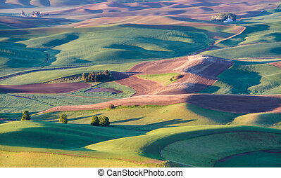 Palouse - The palouse area in Washington state