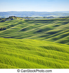 Tuscany, rolling hills on sunset. Crete Senesi rural...