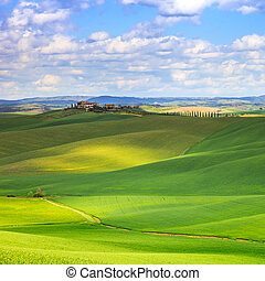 Tuscany, Crete Senesi green fields and rolling hills...