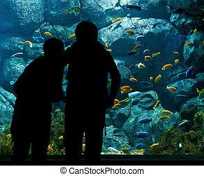aquarium - people near big aquarium