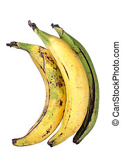 Plantain bananas - Three big ripe yellow and green plantain...