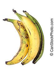 Plantain bananas - Three big ripe yellow and green plantain...