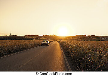 Car driving through the corn fields at twilight in Portugal