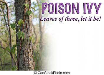 Poison Ivy Graphic - Poison Ivy photo with text: Leaves of...