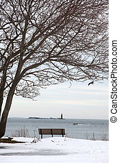 Coast of Maine - Park bench under a tree on the coast of...
