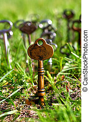 Skeleton Key - One Gold skeleton key sticks into the ground...