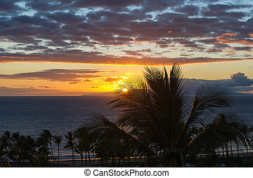 Maui Sunset - Beautiful Maui Hawaii beach Pacific ocean Palm...
