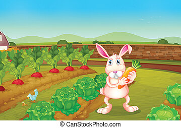 A bunny holding a carrot along the garden - Illustration of...
